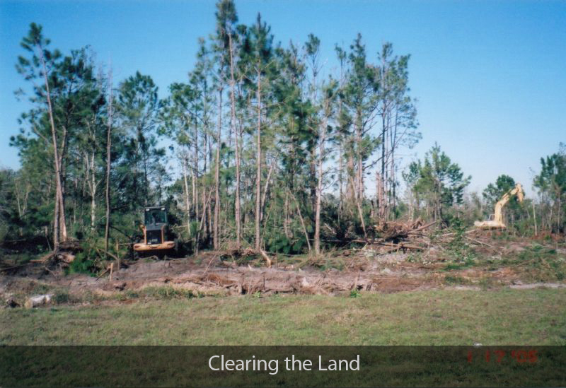 3-clearing-the-land